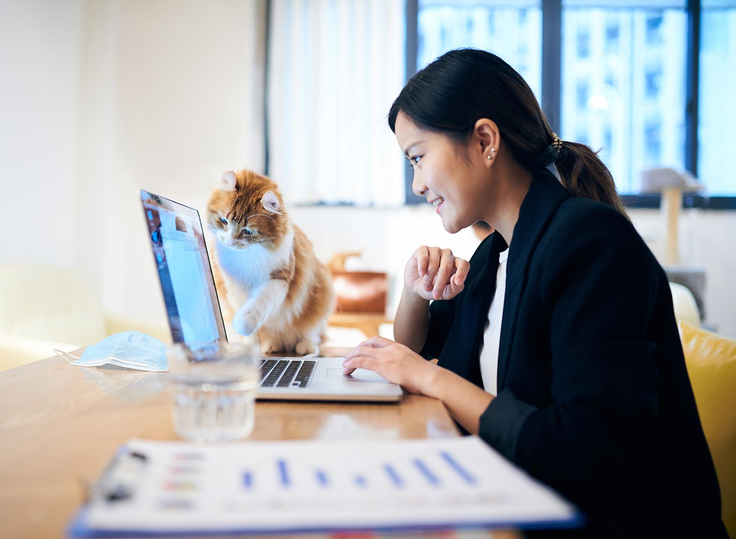 iStock-1221003619 woman working at laptop screen with cat